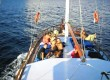 BABAC - gulet yachtcharter Split Vodice Trogir