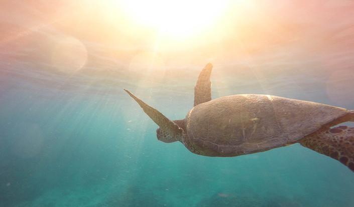 6 einfache Wege, Ihren Plastikverbrauch auf einem Segelurlaub zu reduzieren